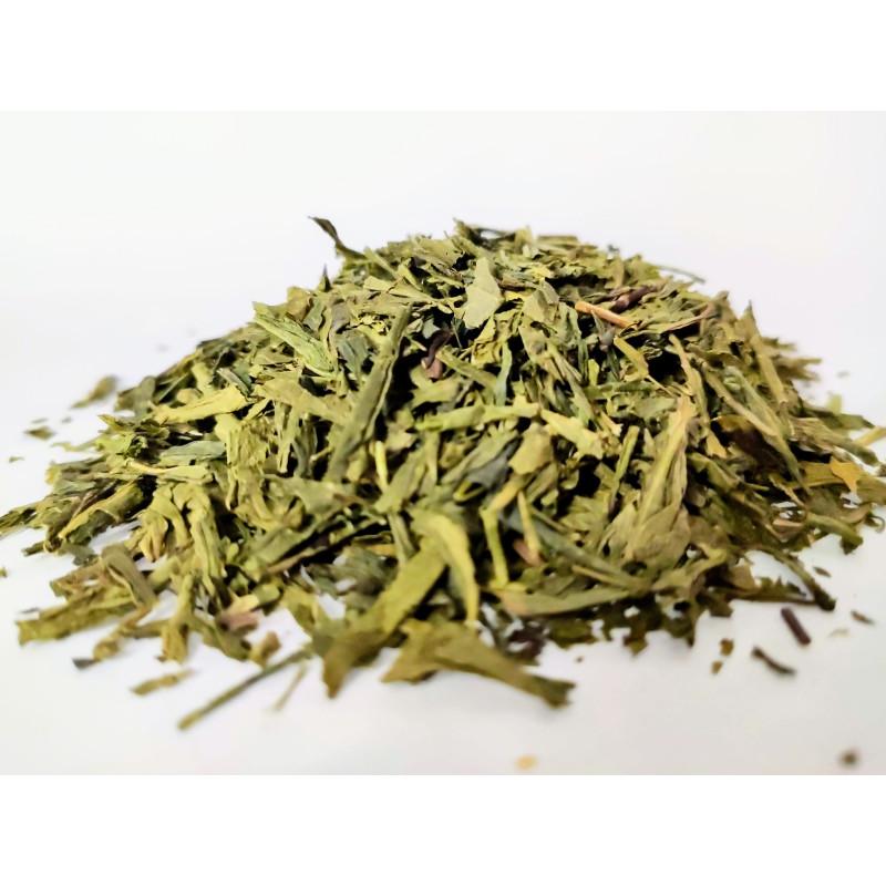 Herbata zielona China Sencha chińska liściasta
